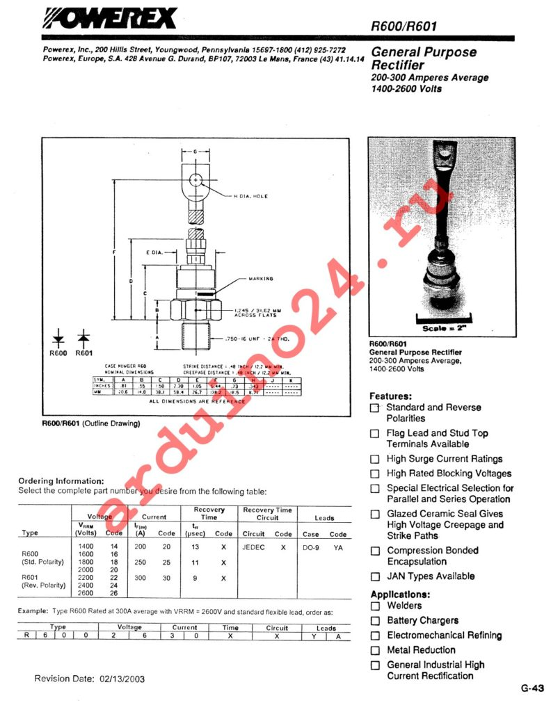 R6002030XXYA datasheet